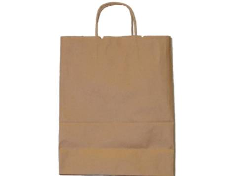 Brown Paper Merchandise Bag